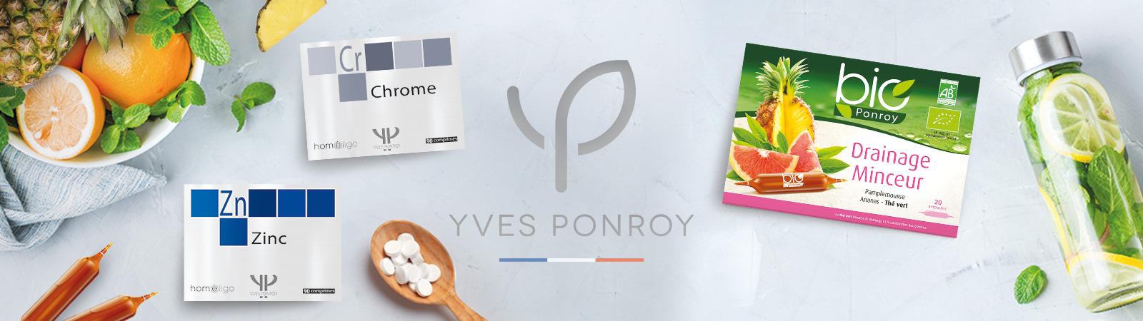Yves Ponroy