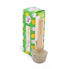 Dentifrice solide Sauge-Citron 17g Bio