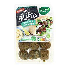 Falafels menthe et coriandre 250g Bio