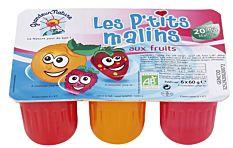Les P'tits malins aux fruits 6x60G Bio