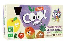 Gourdes fruits pomme mangue ananas 12x90g Bio