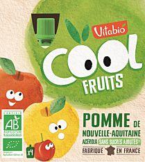 4X90G Vitabio Cool Frui/Pomme Bio