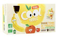 Gourdes fruits pomme banane 12x90g Bio