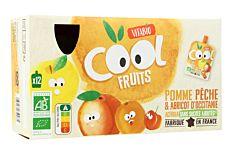 Gourdes fruits pomme pêche abricot 12x90g Bio