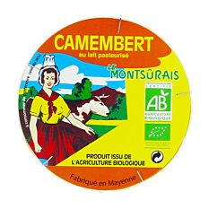 Camembert 45%Mg 250G Bio