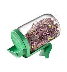 Germoir en verre pour graines à germer