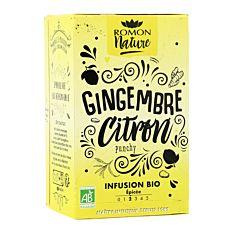 Infusion gingembre citron x16 Bio