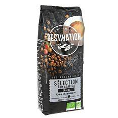 Café en grains Sélection n°1 1Kg Bio