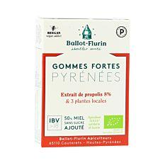 Gommes fortes Pyrénées 30g Bio
