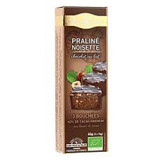 Mini rocher chocolat au lait & noisettes 45G Bio