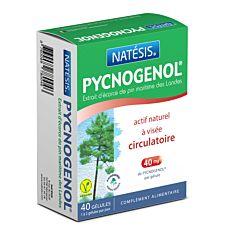 Pycnogenol - 40 gélules Vcaps