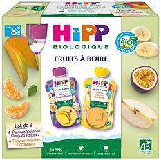 Multipack de gourdes de fruits 8M 8x90Ml Bio