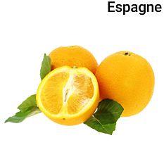 Orange à Jus - lot de 4
