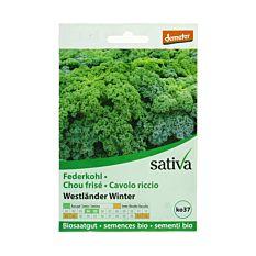 Chou Frisé Kale Westländer Winter Bio