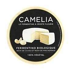 Camélia fermentino 100g Bio